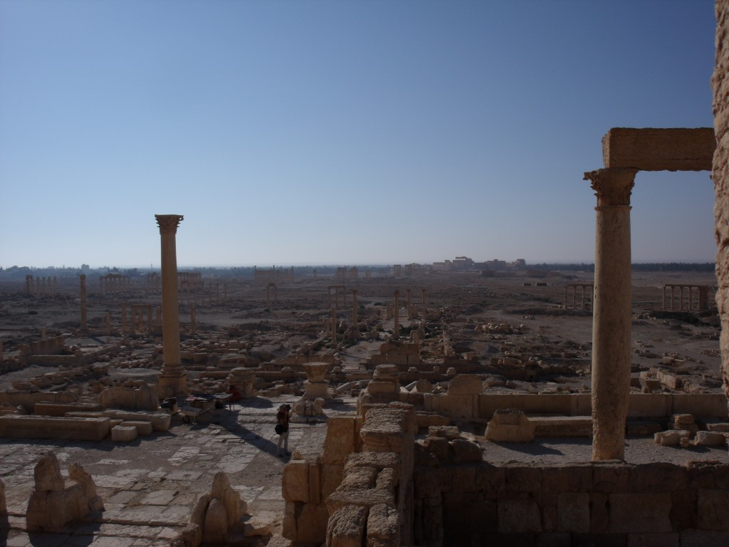 Looking out over Palmyra, 2010.