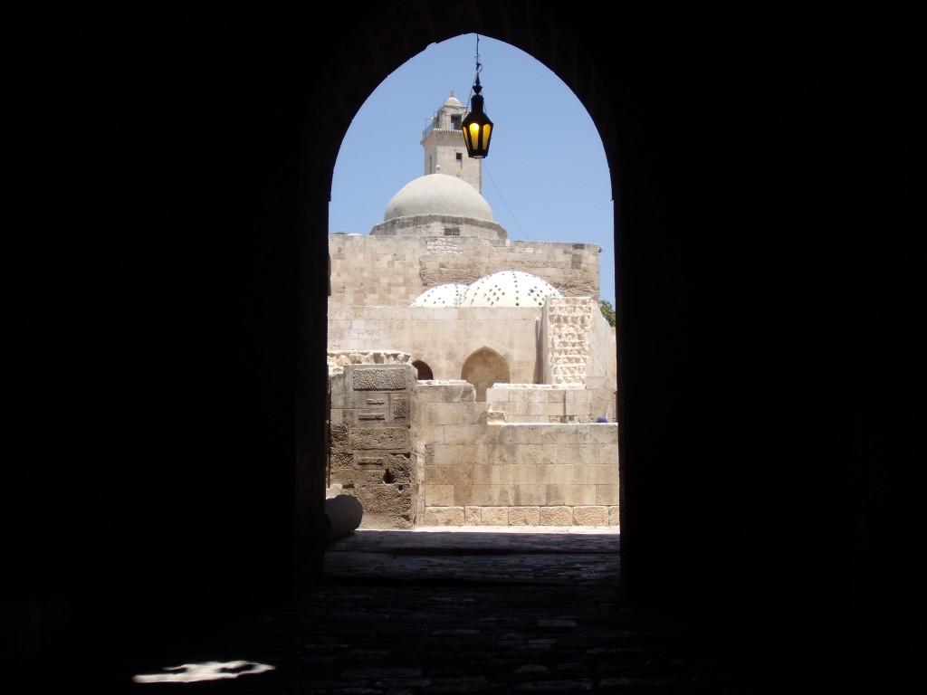 Citadel of Aleppo, 2010.