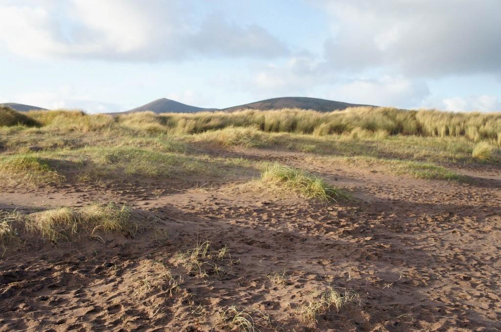 More amazing dunes < 3
