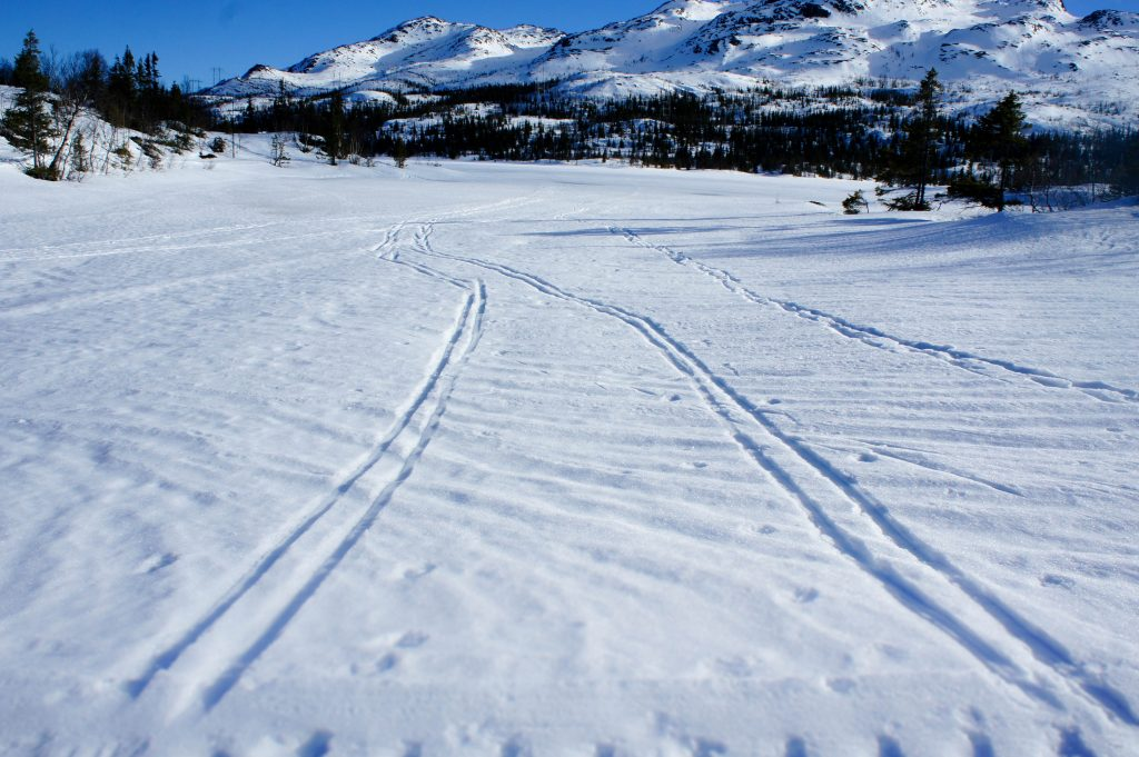 Cross-country skiing track (over frozen lake!)